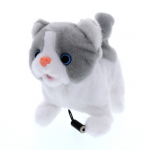 Lil Kitty Switch Toy
