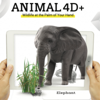 Animal and Food FlashCards 4D Augmented Reality