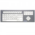 BigKeys LX White /  QWERTY